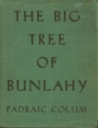 The Big Tree Of Bunlahy: Stories Of My Own Countryside