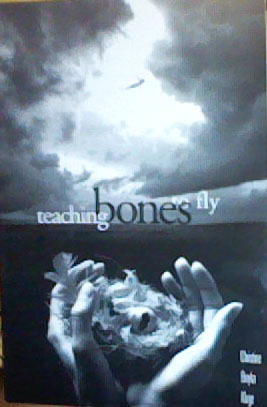 Teaching Bones to Fly: Poems