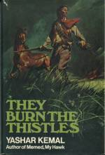 They Burn The Thistles by Margaret E. Platon