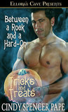 Between a Rock and a Hard-On by Cindy Spencer Pape