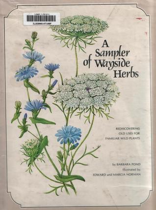 Sampler of Wayside Herbs by Barbara Pond