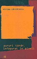 Pururi tanar, infasurat in pixeli by Mircea Cărtărescu