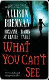 What You Can't See (Bullet Catcher, #3.5; Seven Deadly Sins, #.5))