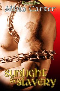 Sunlight & Slavery by Mina Carter