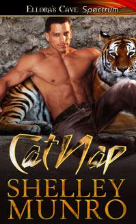 Catnap by Shelley Munro