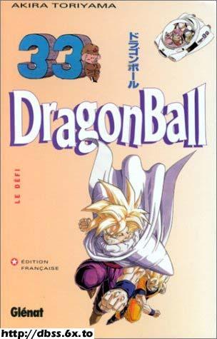 Dragon Ball, Tome 33 : Le défi