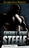 Steele (Sterling Files, #1)