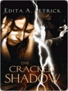 The Cracked Shadow