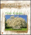Better Picture Guide to Flower & Garden Photography (Better Picture Guide Series)