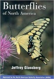 Butterflies of North America
