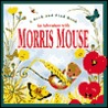 An Adventure With Morris Mouse (Peek and Find)