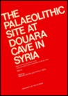 The Palaeolithic Site at Douara Cave in Syria: Part 1