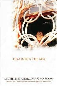 draining-the-sea