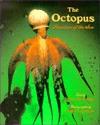 the-octopus-phantom-of-the-sea
