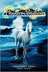 Castaway Colt (Phantom Stallion: Wild Horse Island, #4)