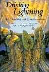 Drinking Lightning: Art, Creativity, and Transformation
