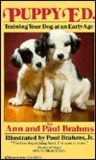 Puppy Ed.: Training Your Dog at an Early Age