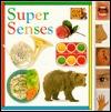 Tab Board Books: Super Senses