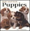 Hide-and-Seek Puppies (Hide-And-Seek Book)
