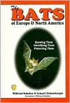 the-bats-of-europe-north-america-knowing-them-identifying-them-protecting-them
