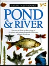 Pond & River (Eyewitness Books)