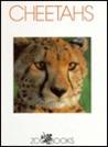 Cheetahs by Linda C. Wood
