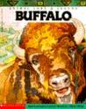 Animal Lore and Legend: Buffalo (Animal lore & legend)