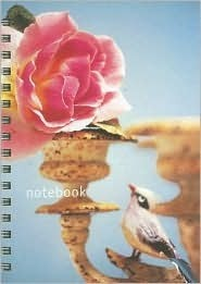 NOT A BOOK Flea Market Style Notebook (Paperstyle Mini Notebooks)
