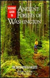 Visitors Guide to the Ancient Forests of Washington