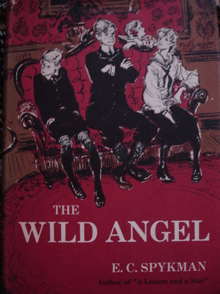 The Wild Angel by Elizabeth C. Spykman