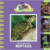 My First Book About Reptiles (Sesame Subjects)