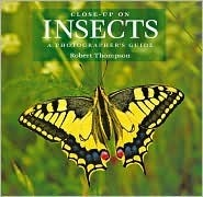 Close-Up on Insects: A Photographer's Guide