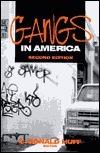 Gangs in America