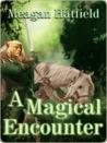 A Magical Encounter