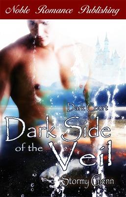 dark-side-of-the-veil
