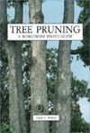 tree-pruning-a-worldwide-photo-guide