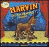 marvin-the-tap-dancing-horse