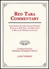 red-tara-commentary-instructions-for-the-concise-practice-known-as-red-tara-an-open-door-to-bliss-and-ultimate-awareness