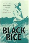 Black Rice: The African Origins of Rice Cultivation in the Americas,