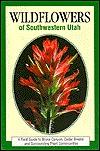 Wildflowers of Southwestern Utah by Hayle Buchanan