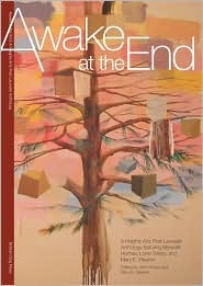 Awake at the End:: A Heights Arts Poet Laureate Anthology