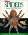 Spiders and Scorpions : A Look Inside Series