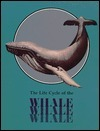 The Whale: Life Cycle Books