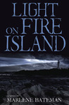 Light on Fire Island