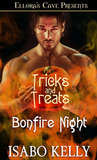 Bonfire Night by Isabo Kelly