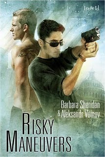 Risky Maneuvers by Barbara Sheridan
