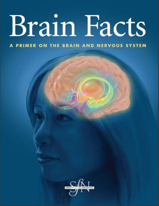 Brain Facts: A Primer On The Brain And Nervous System by The Society ...