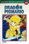 Dragon Pigmario Vol. 27