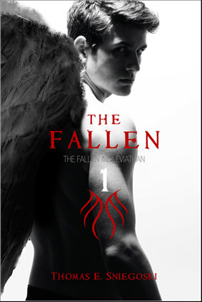 The Fallen series by Thomas E. Sniegoski thumbnail