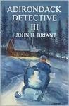 Adirondack Detective III